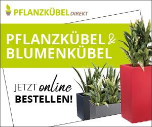 pflanzkuebel-direkt.de - Töpfe u. Kübel für Buchsbaum / Buxbäume