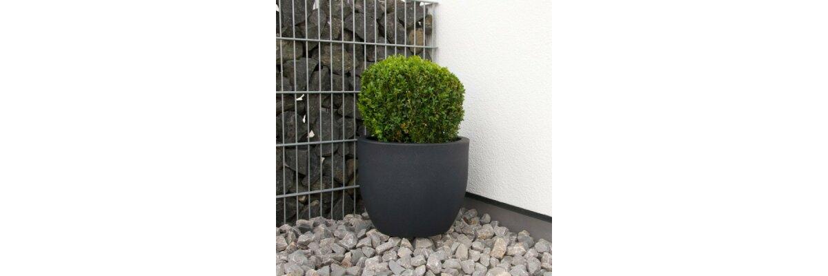 Pflanzkübel für Außenbereiche - Welche Anforderungen müssen sie erfüllen?  - Pflanzkübel für Außenbereiche