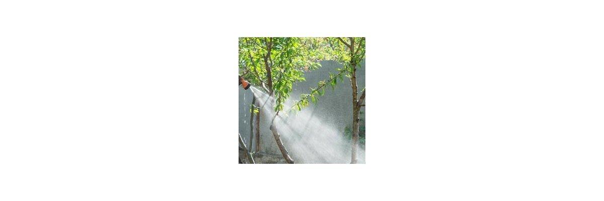 Das richtige Gießen von Pflanzen im Außenbereich - Pflanzkübel im Freien richtig Gießen