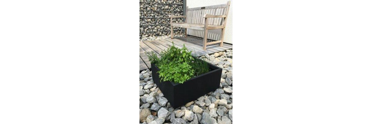 Ideen für Pflanzkübel – Kräutergärten  - Wie lege ich einen Kräutergarten in Pflanzkübeln an?