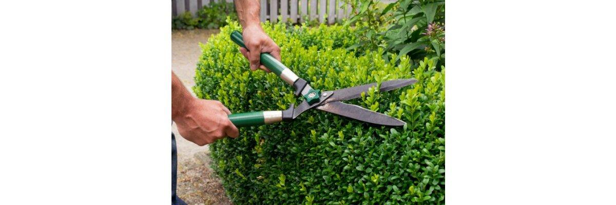 Gartenarbeit im März - Praktische Tipps zum Saisonstart - Gartenarbeit im Frühling - Tipps & Tricks