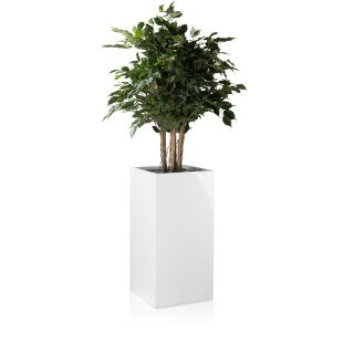 Pflanzkübel TORRE 80 Fiberglas weiß hochglanz