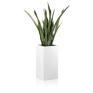 Pflanzkübel TORRE 60 Fiberglas weiß hochglanz