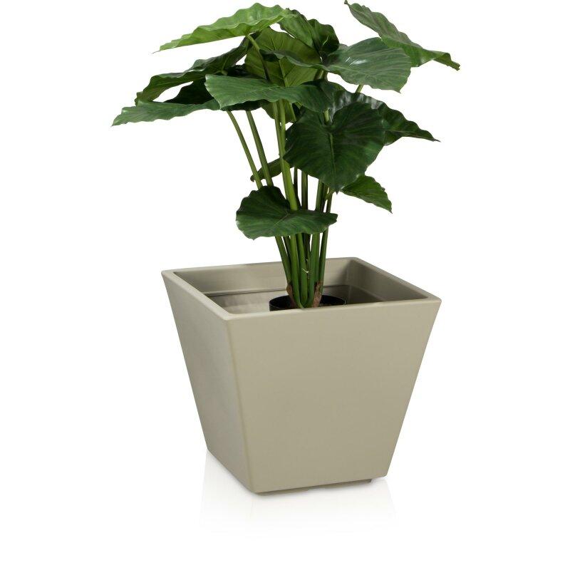 Wetterfester Blumenkübel für Gestaltungsideen mit Kletterpflanzen
