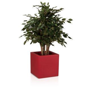 Pflanzkübel CUBO 40 Kunststoff rot matt