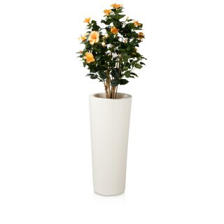 Pflanzkübel CONO 90 Kunststoff weiß matt