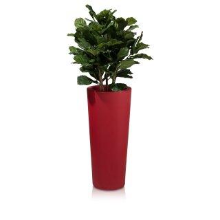 Pflanzkübel CONO 90 Kunststoff rot matt