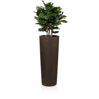 Pflanzkübel CONO 110 Kunststoff bronze matt