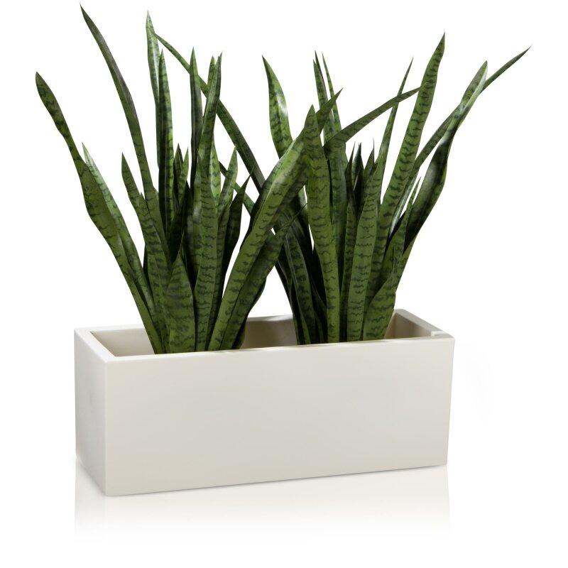 pflanztrog-muro-30-kunststoff-wei-matt