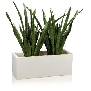 Pflanztrog MURO 30 Kunststoff weiß matt