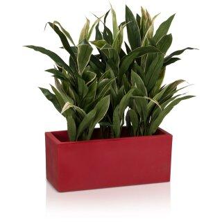 Pflanztrog MURO 25 Kunststoff rot matt