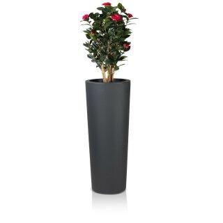 Pflanzkübel CONO 110 Kunststoff anthrazit matt