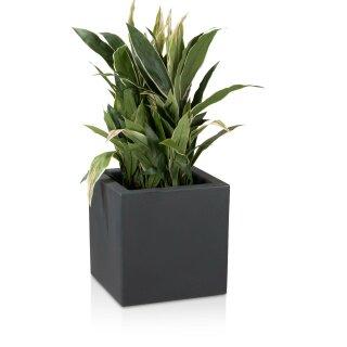 Blumenkübel  CUBO 40 Kunststoff anthrazit matt
